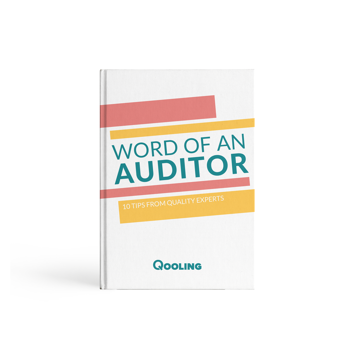 Word of an Auditor E-book